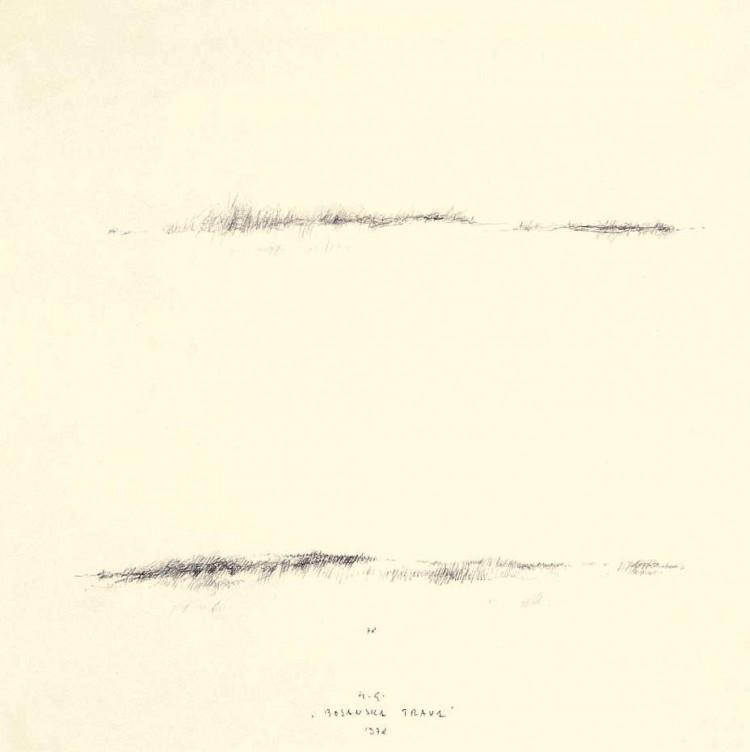 Bosanska trava / Bosnian Grass / Bosnisches Gras, 1978, grafit, papir / graphite, paper / Grafit, Papier, 29 x 29 cm