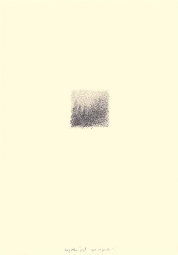Gozd / Wood / Wald, 1981, grafit, papir / graphite, paper / Grafit, Papier, 75 x 52 cm