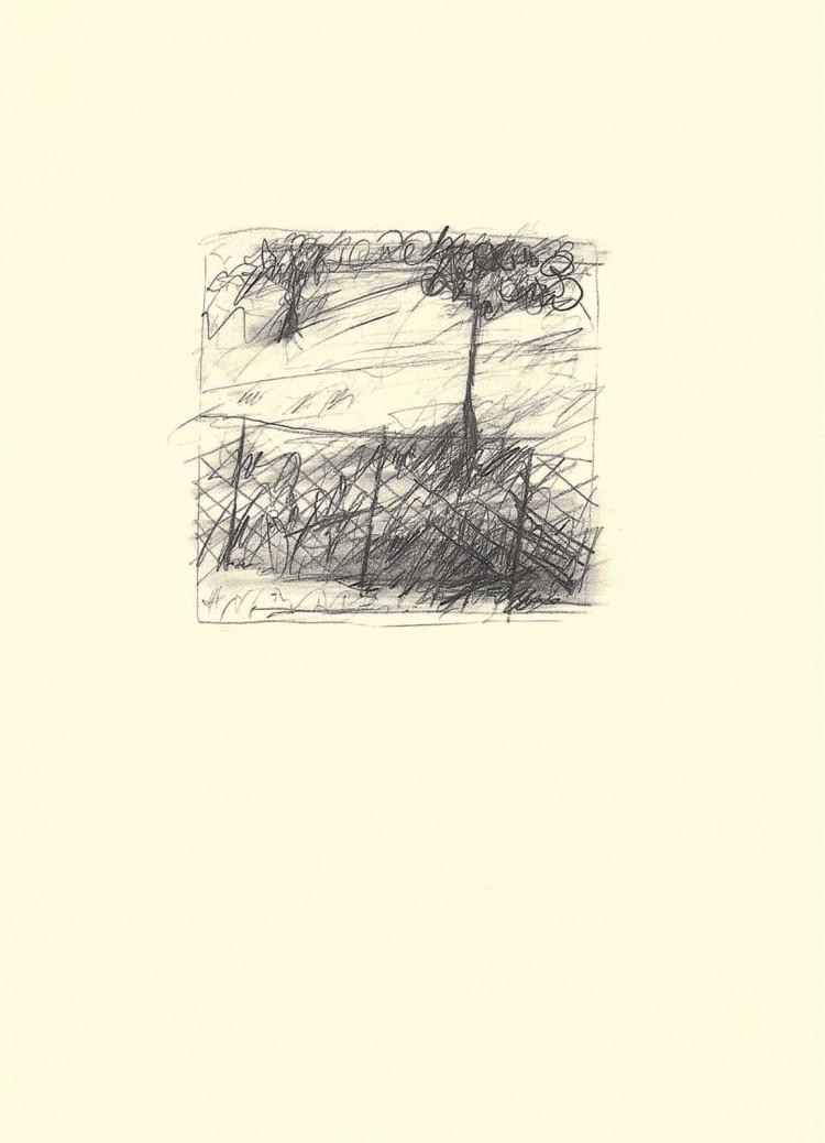 B.N., 1982, grafit, papir / graphite, paper / Grafit, Papier, 45 x 33 cm