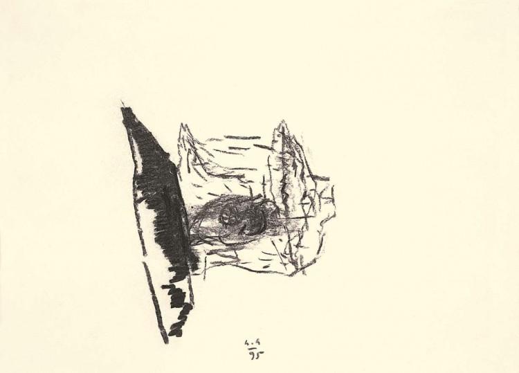 D.S.M.O., 1995, oglje, papir / charcoal, paper / Kohle, Papier, 41,5 x 30 cm