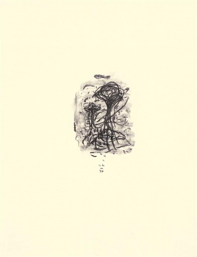 Kobilje, 1997, oglje, papir / charcoal, paper / Kohle, Papier, 75 x 55 cm