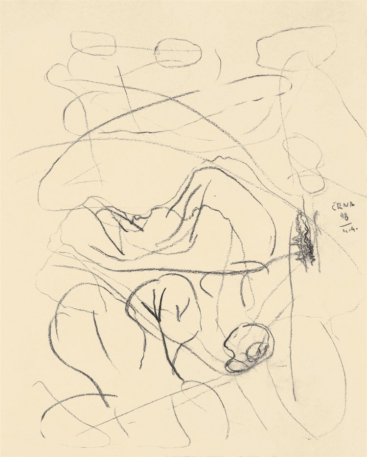 Črno jezero, 1998, oglje, papir / charcoal, paper / Kohle, Papier, 50 x 70 cm