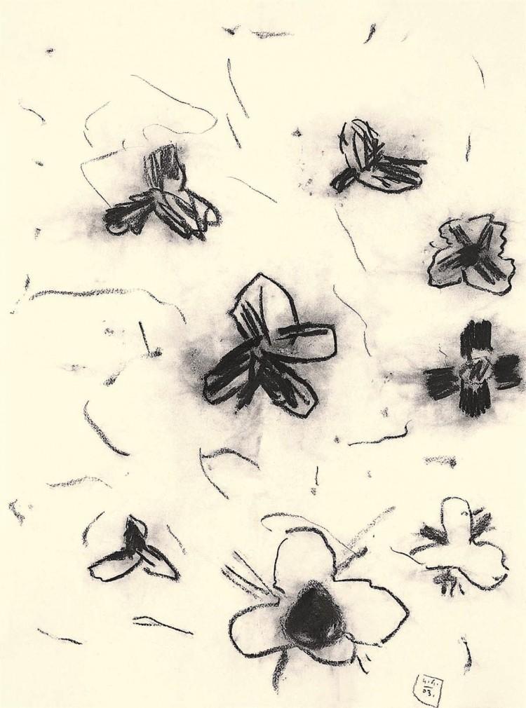 B.N., 2003, oglje, papir / charcoal, paper / Kohle, Papier, 67 x 50 cm