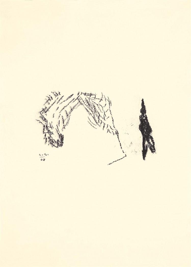 Krajina / Landscape/ Landschaft, 2005, oglje, papir / charcoal, paper / Kohle, Papier, 59 x 42 cm