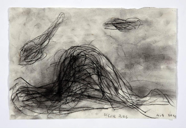 Sigur Ros; 2010; oglje, papir / charcoal, paper / Kohle, Papier; 200 x 300 mm