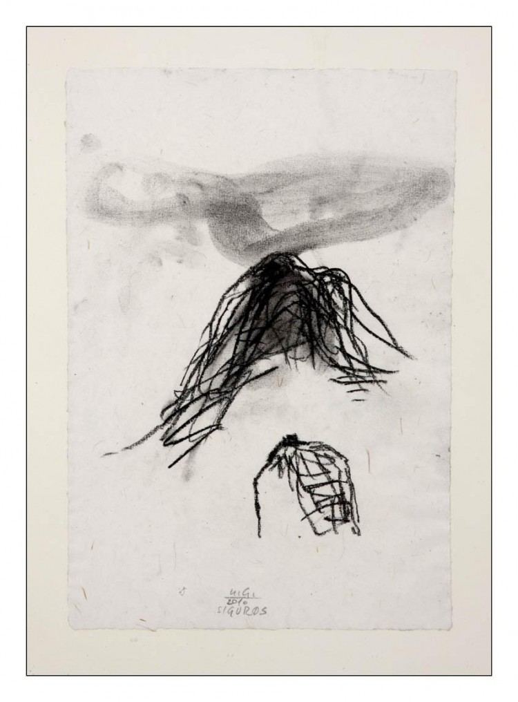 Sigur Ros; 2010; oglje, papir / charcoal, paper / Kohle, Papier; 300 x 200 mm