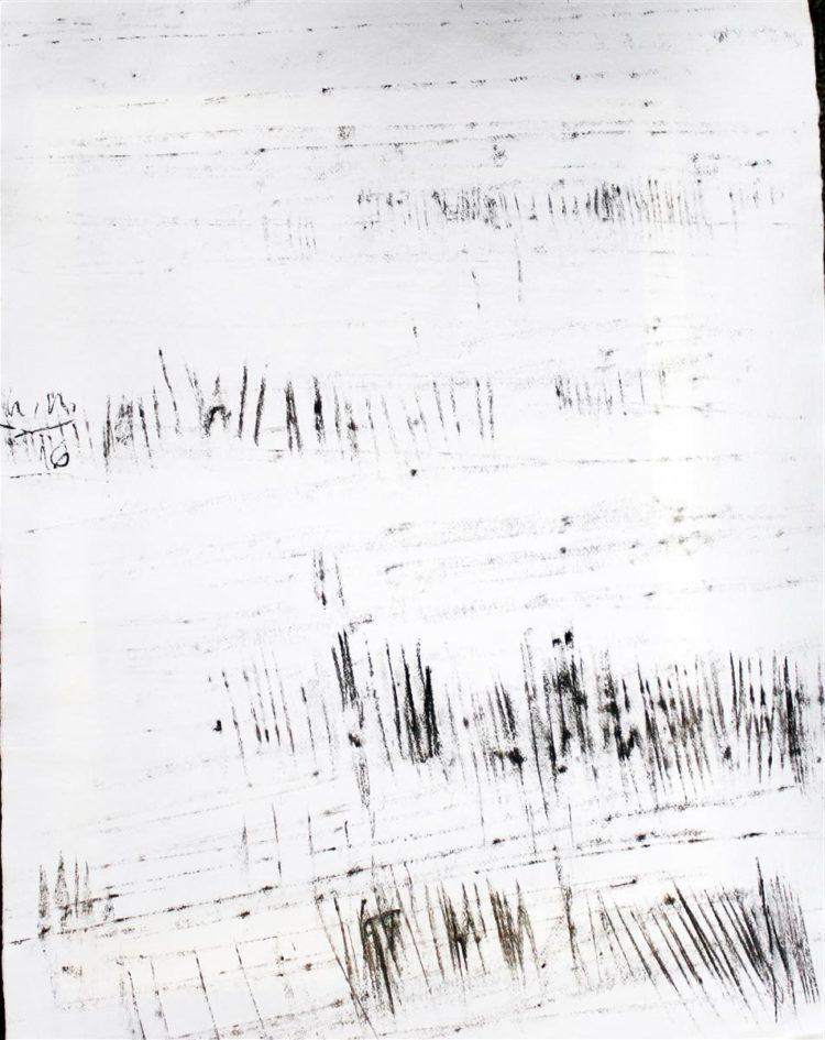 Krajina, oglje na papir, 66x50cm, 2016