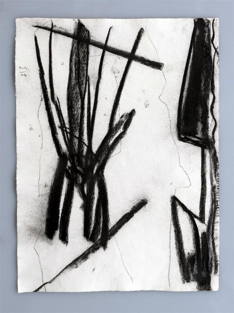 Krajina, 2014, 50x67cm, oglje